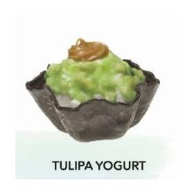 TULIPA YOGURT C/12U